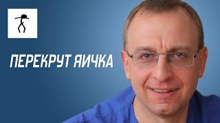 ПЕРЕКРУТ ЯИЧКА. Уролог, андролог, сексопатолог Алексей Корниенко(, 2015-12-09T11:25:50.000Z)