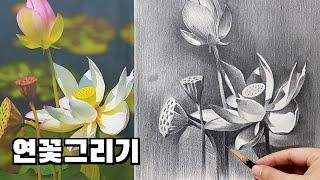 감성 가득한 연필드로잉 - 연꽃 그리기
