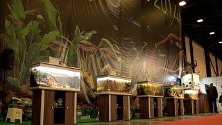 Biotope Aquarium Design Contest 2014 - Compilation Of Finalists' Aquariums
