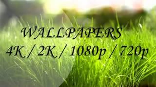 Pack de Wallpapers 4k / 2k / Full HD 1080p / HD 720p - Free Download