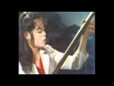Vintage Shanghai Chinese Orchestra《民乐浅赏·上海民族乐团演奏纪录之二》 Part II