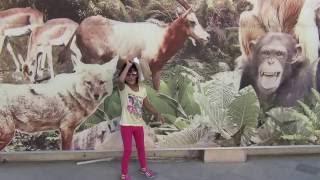 Dubai Zoo Jumeirah