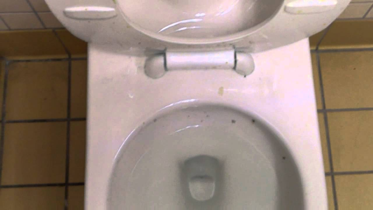4964 brand new back spud gpf american standard afwall toilet with everclean glaza youtube. Black Bedroom Furniture Sets. Home Design Ideas