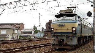 EF66 28 コンテナ列車 高速通過  草津 乳屋踏切 2009.5.26