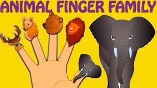 Repeat youtube video Animal Finger Family - Nursery Rhymes For Children