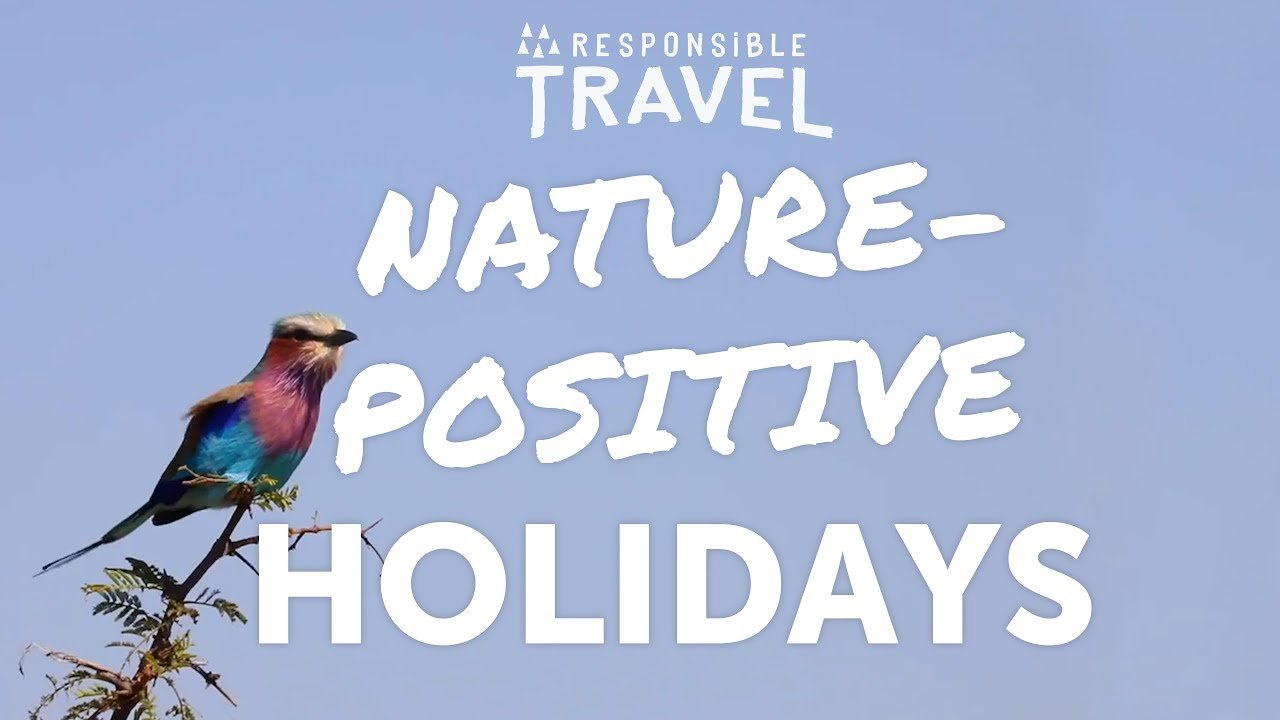 Responsible Travel: Nature-Positive Holidays
