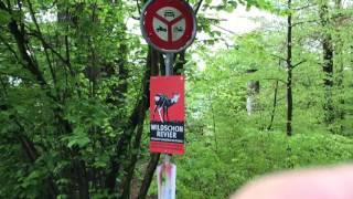 Switzerland-Zurich Houses along Walking Trail