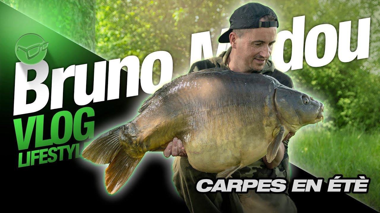 Download Lifestyle Series | EP.24 | Carpes en été
