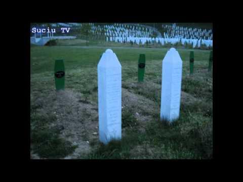 The Srebrenica Massacre
