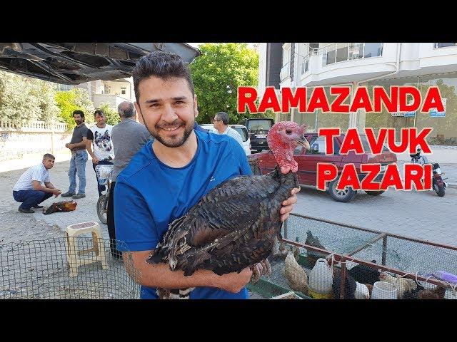 RAMAZANDA TAVUK CİVCİV PAZARI NE DURUMDA