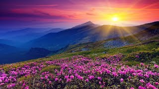 Relaxing Instrumental Hymns that are Encouraging & Inspirational | Beautiful, Soothing, Peaceful