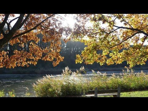 couleurs d&39;automne   vidéo 1