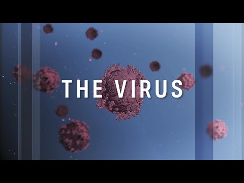 The Virus: The latest on the world's fight against the coronavirus | ABC News