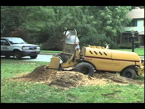 Stump Grinding - Any Stump, Any Size, Any Place