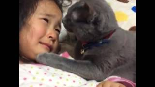 Cat Trying To Comfort A Crying Girl Is The Sweetest Thing On The Internet