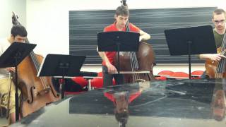 Stand by Me for Double Bass Ensemble - Arrag. Chris Kapica