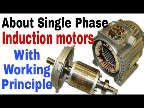 Know about single phase induction motor working principle for Types of single phase motor