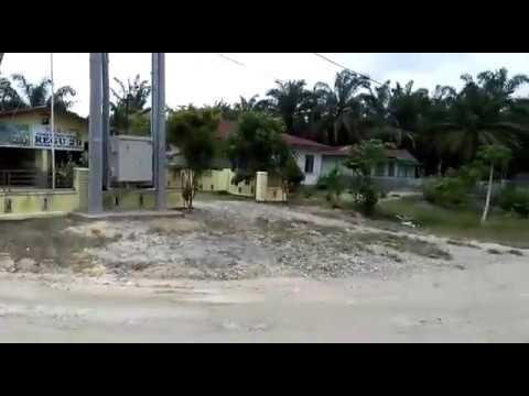 Kayu Ilegal dari Cagar Biosfer Diangkut Lewati Pos Polisi dan Babinsa Mp3