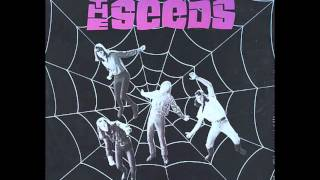 Pictures And Designs - The Seeds