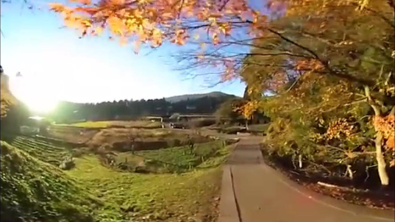 [VR][360][RICOH THETA S]滋賀県長浜市鶏足寺 siga_nagahama_keisokuzi