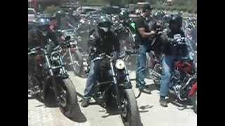 harley-davidson revving hard and loud at big wheels motoring cafe