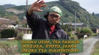 Osamu Ueda, Tea Farmer