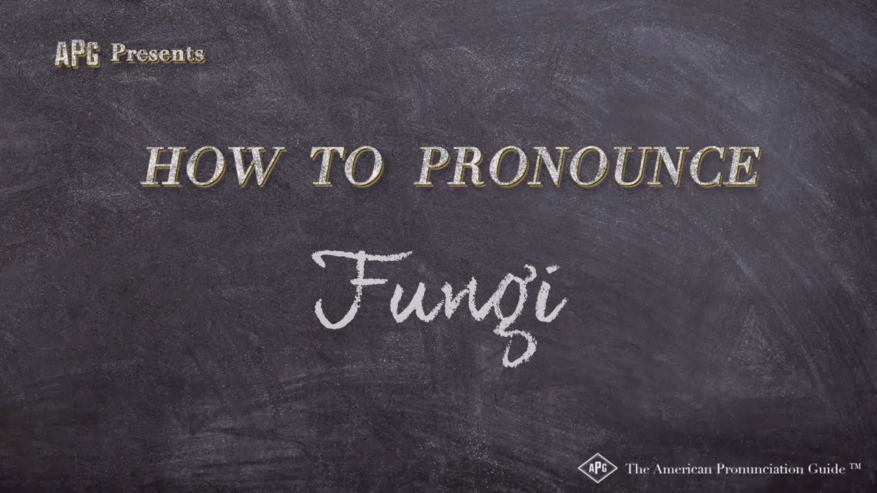 How To Pronounce Fungi Fungi Pronunciation Youtube