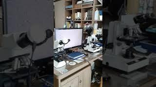 오이지 담근 물속의 유산균-영국제 3안현미경 관찰.