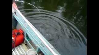 Рыбалка Дальний Восток(, 2012-04-17T07:21:28.000Z)