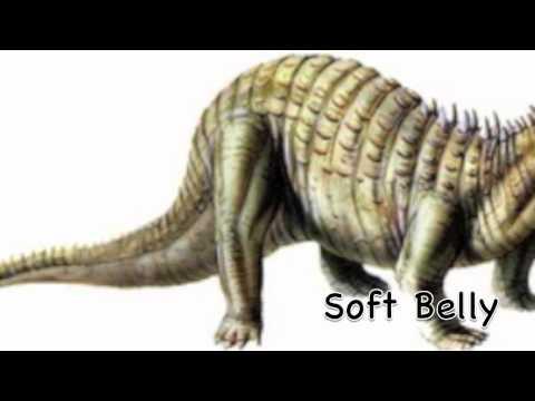 Intro to Ankylosaurs