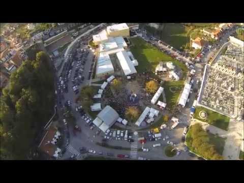 Feira da Castanha de S. Pedro de Castelões - 2015