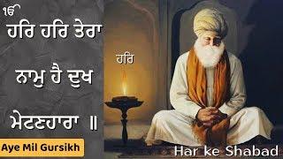 har har tera naam hai dukh metin hara | full shabad | aye mil gursikh | bhai dalbir singh ji