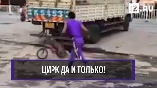 Цирковая обезьяна уехала от собаки на велосипеде в Азии