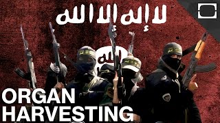 Is ISIS Harvesting Human Organs?