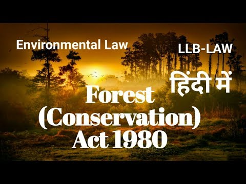 Forest (Conservation) Act 1980|Environmental (Protection) Act 1986|Forest Act