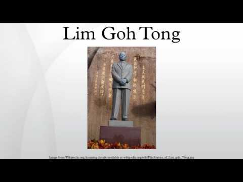 the successful tan sri lim goh tong