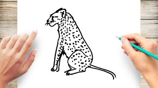How to Draw Cheetah Step by Step for Kids