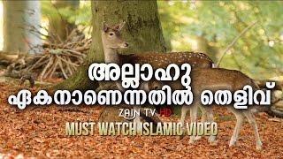 അല്ലാഹു ഏകനാണെന്നതില് തെളിവ്- Super Islamic Video- Zain TV HD