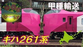 【ピンクちゃん】キハ261系はまなす編成の甲種輸送を見に行こう!HOKKAIDO LOVE!