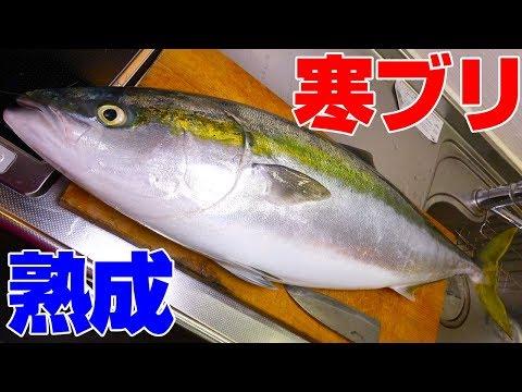【発見】釣ったその日は勿体無い!?初日・24時間・48時間で食べ比べ‼
