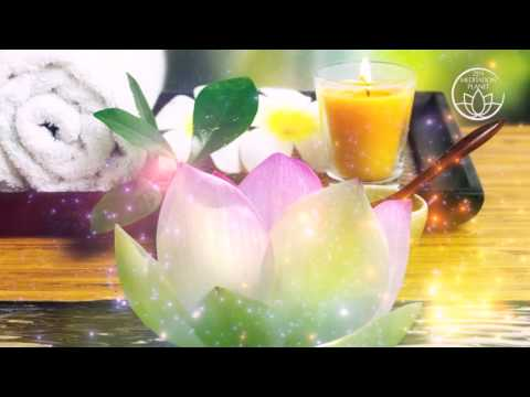 Spa & Wellness Oasis – Relaxing Music for Massage, Spa Music, Tranquil Meditation Music