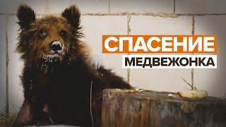 «Самое страшное уже позади» в Челябинской области спасли от гибели медвежонка