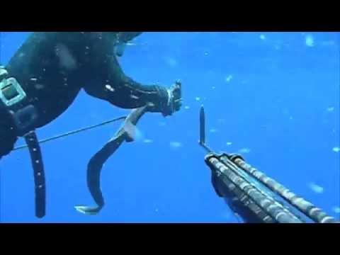 Pesca Submarina El Hierro 2008 Jose Miguel Y Juanki Youtube