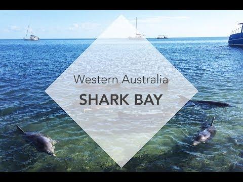 Shark Bay (Monkey Mia), Western Australia | VACAYMOOD