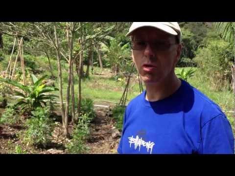 The Zen Investor Interviews: The Organic Gardens of Better in Belize