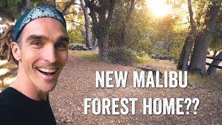 NEW MALIBU FOREST HOME??