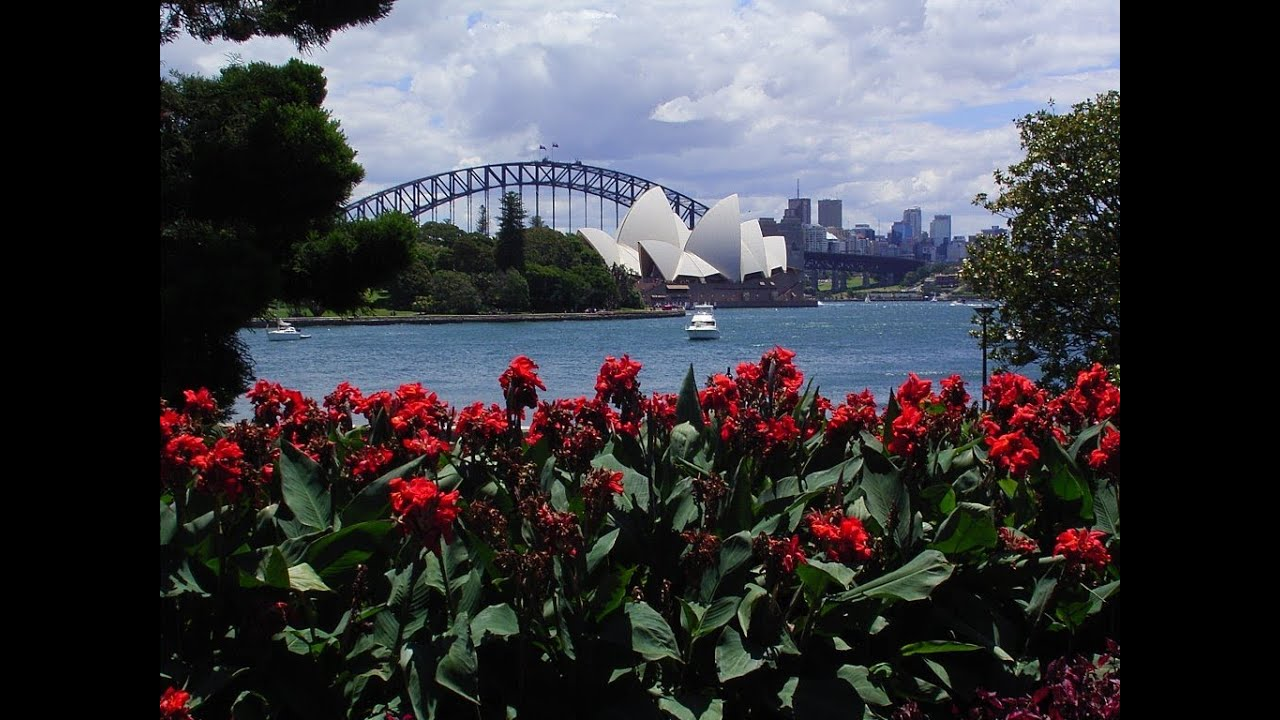Sydney Royal Botanic Garden Tour   YouTube