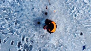 Первая зимняя рыбалка в жизни Зима 2021 Ловим на озере с инструктором белую рыбу