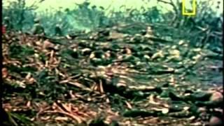 Testemunhas da segunda guerra mundial parte 3 Dublado português
