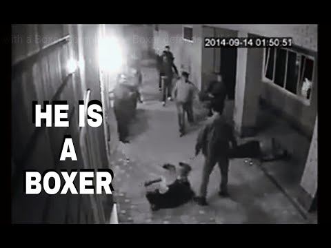 Don't mess with Boxers (Best Compilation) - Boxer defends girlfriend/wife
